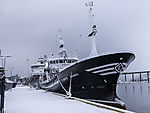 Trawler Elisabeth in Tromsö