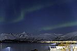 aurora bows over island Kvalöya