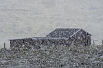 Schneegestöber vor Bootshaus