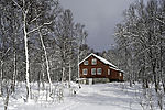 red house in snow forest