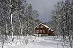rotes Haus im Schneewald
