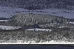 Schneewald auf Kvalöya und Grindöya