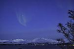 Nordlicht über Kvalöya in Frühlingsnacht