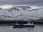 fish carrier Ro Fjell near Tromso