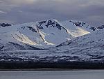 Abendlicht auf Skitnskardfjellet