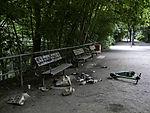 vermüllter Park am Sontagmorgen