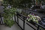 Blumen auf Balkon