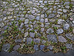 cobblestone pavement in lane in Hamburg