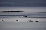 watersports in northern Norway