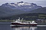 fishtransporter Reisa near Tromso