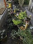 Vorgarten mit bepflanzten Stiefeln
