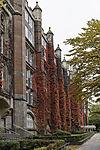 roter Herbst am alten Postamt Hamburg 13